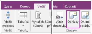 Snímka obrazovky s tlačidlom Vložiť obrázky vo OneNote 2016.