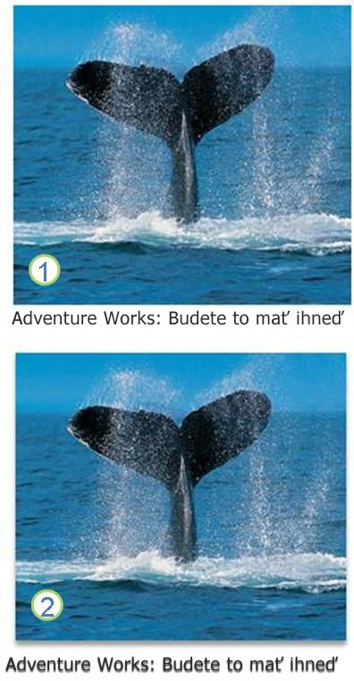 Textové a obrázkové efekty