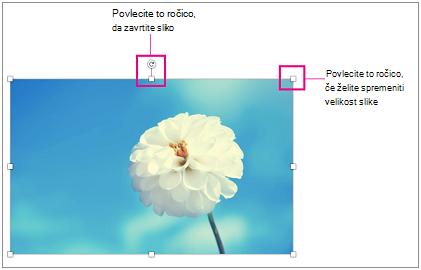 Slika z označenimi ročicami za spreminjanje velikosti