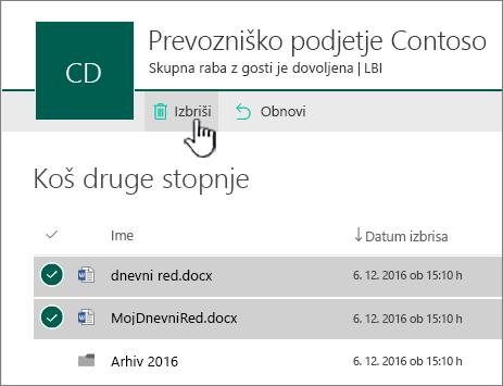 Koš na 2. ravni v storitvi SharePoint Online z označenim gumbom za brisanje