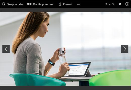 Posnetek zaslona pregledovalnika slik v storitvi OneDrive za podjetja v strežniku SharePoint Server 2016 s paketom funkcij 1