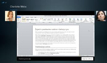Posnetek zaslona seje skupne rabe programa v prikazu možnosti »Dejanska velikost«
