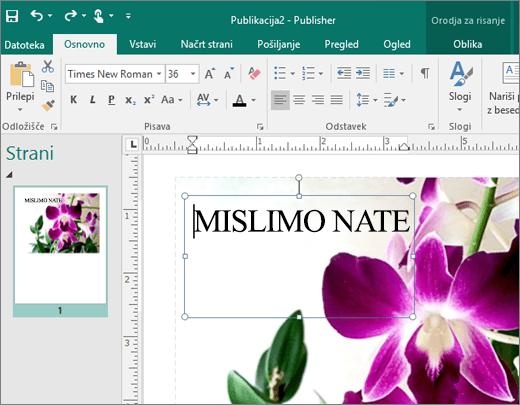 Posnetek zaslona polja z besedilom na strani Publisherjeve datoteke.