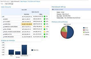 Primer nadzorne plošče, ki jo gosti SharePoint Server 2010