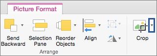 Gumb »Crop« (Obreži) na zavihku »Picture Format« (Oblika slike)