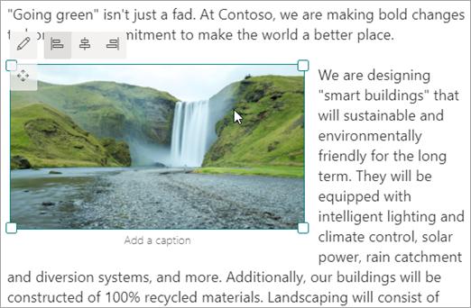 Primer slike v vrstici v spletnem gradniku za besedilo