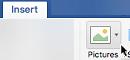 Na traku orodne vrstice izberite »Vstavi«, nato »Slike« in »Spletne slike«