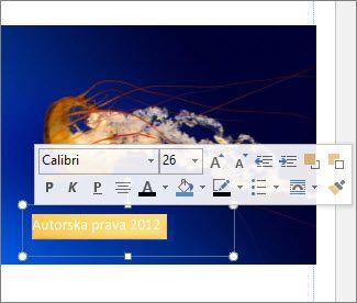 Oblikovanje teksta u okviru za tekst
