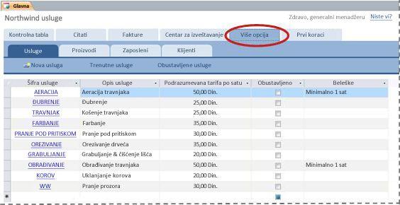 """Kartica """"Više opcija"""" predloška Services baze podataka"""
