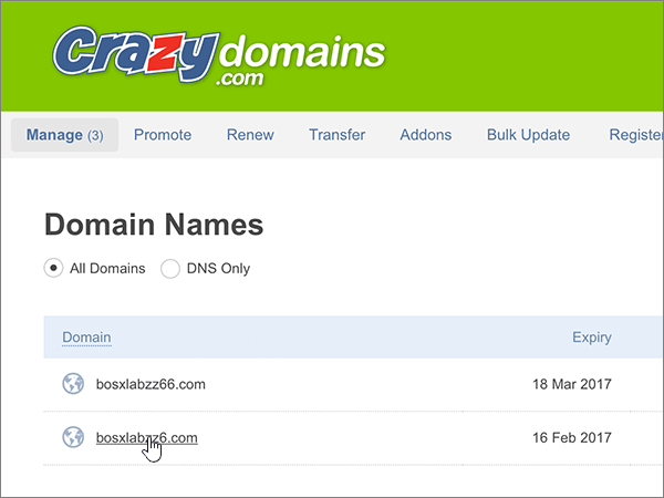 CrazyDomains-BP-Configure-1-3
