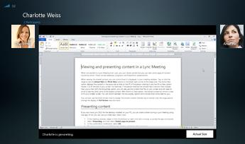 Snimak ekrana sesije deljenja programa sa prikazanom opcijom za stvarnu veličinu