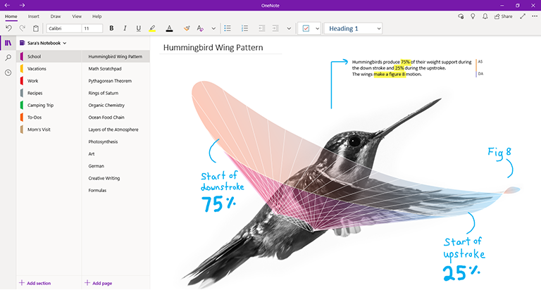 Snimak ekrana programa OneNote za Windows 10