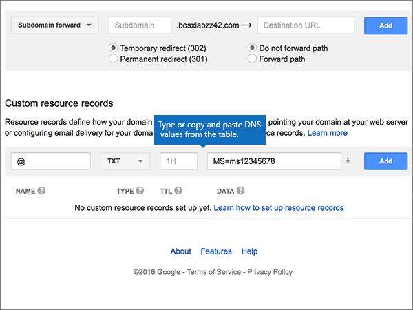 Google-Domains-BP-Verify-1-1