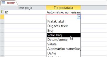 """Lista tipova podataka sa markiranom stavkom """"Veliki broj"""""""