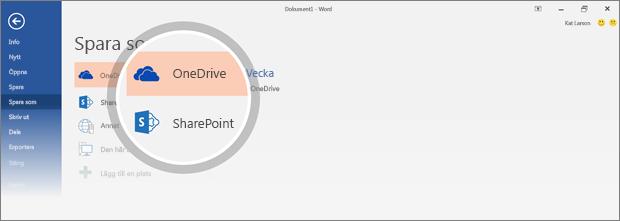 OneDrive- och SharePoint-platserna där du kan spara dokumentet är markerade
