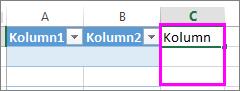 skriv i kolumnen till höger om den sista kolumnen i tabellen för att lägga till ny kolumn