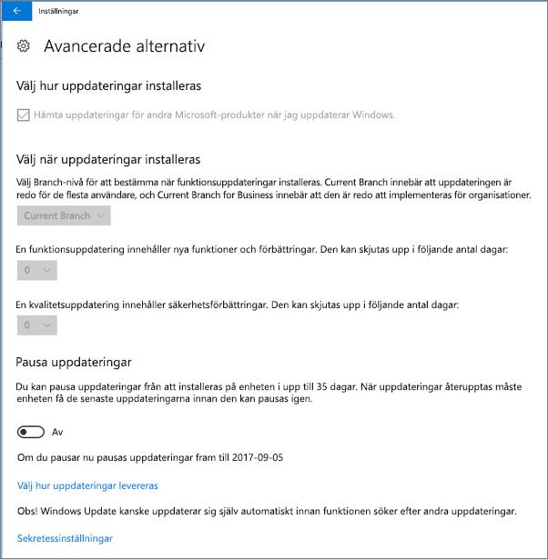 Windows avancerade uppdateringsalternativ är alla nedtonade.