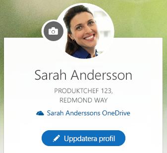 Klicka på Uppdatera profil om du vill ändra informationen