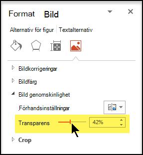 Dra skjutreglaget för genomskinlighet för åt höger om du vill justera opaciteten för bilden