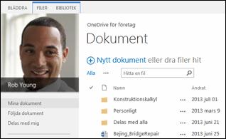 SharePoint 2013 OneDrive för företag