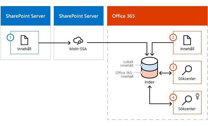 Bild som visar hur Office 365-index lägger till innehåll från båda en SharePoint-innehåll servergrupp och från Office 365.