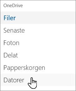 OneDrive-portalens navigering på vänstra sidan som visar Datorer
