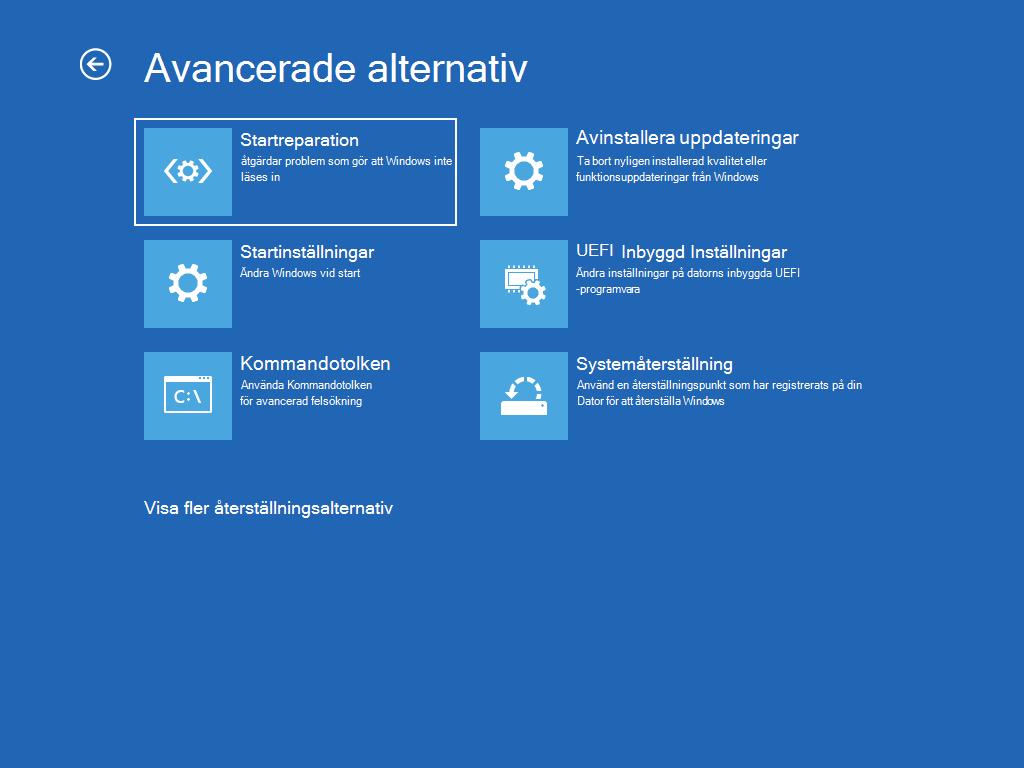 """Visar skärmen """"Avancerade alternativ"""" med """"Autostartreparation"""" markerat."""