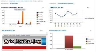 PerformancePoint-instrumentpanel med två filter tillämpade