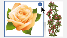 Välj miniatyrbilden för den bild du vill infoga. En bockmarkering visas bredvid bilden.