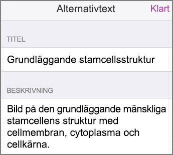 Dialogruta för alternativ text i iPhone.