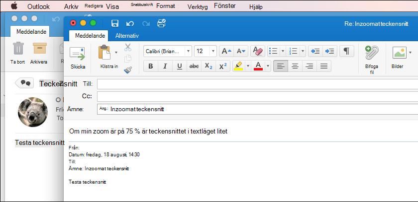 Teckenstorlek för Outlook för Mac