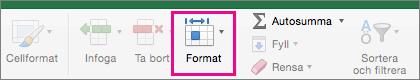 På fliken Start är Format markerat