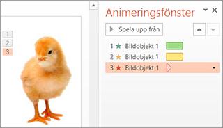 Använda flera animeringar på ett objekt