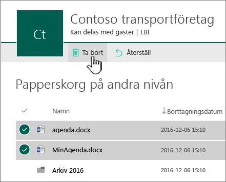 Papperskorgen på andra nivån i SharePoint Online med knappen Ta bort markerad