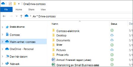Skärmbild av OneDrive för företag-filer i Utforskaren