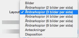 Välj layouten Åhörarkopior i dialogrutan Skriv ut