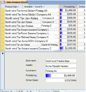 visar datafält i en delad formulärvy