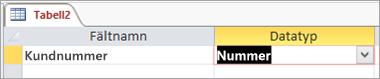 Namn och datatyp för första fältet i en ny Access-tabell