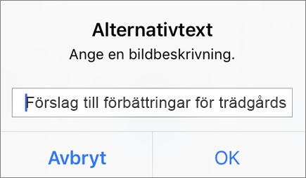 Outlook för iOS: Alternativtext för bildmeny