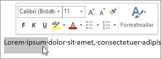 Formateringsverktygsfält för markerad text