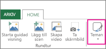 Knappen Teman på fliken Startsidan för Power Map