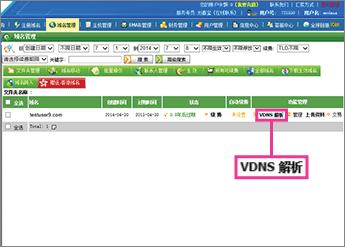 """Klicka på """"VDNS 解析"""""""