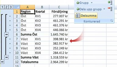 Kommandot Delsumma grupperar data i en disposition