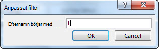 "Dialogrutan anpassat Filter med bokstaven ""L"" ifylld."