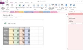 Översikt över ett Excel-kalkylblad på en sida i OneNote