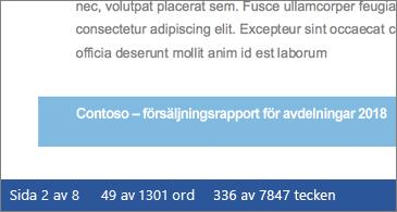 Dokument som visar antal tecken i statusfältet