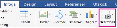 Skärmbildfunktionen i Office 2016 för Mac
