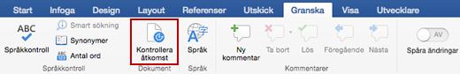 Skärmbild av menyfliksområdet Granska med ikonen Tillgänglighetskontroll