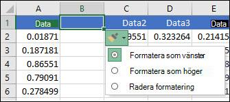 Bild av knappen Infoga alternativ som visas efter att du har infogat rader eller kolumner.