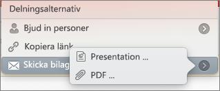 Alternativ för Dela e-post i PPT för Mac